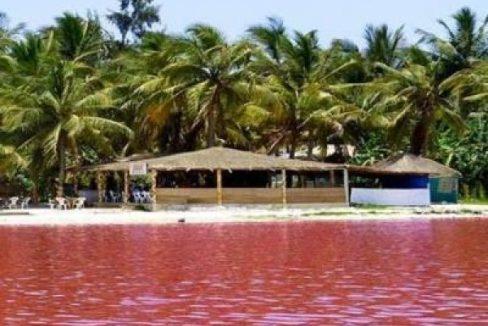 Terrais à vendre au Lac rose 774357705