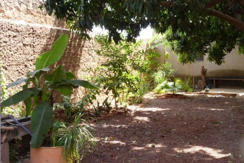 Burkina à louer jardin 00226 76 01 36 99