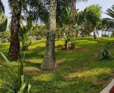 Cote villa 2