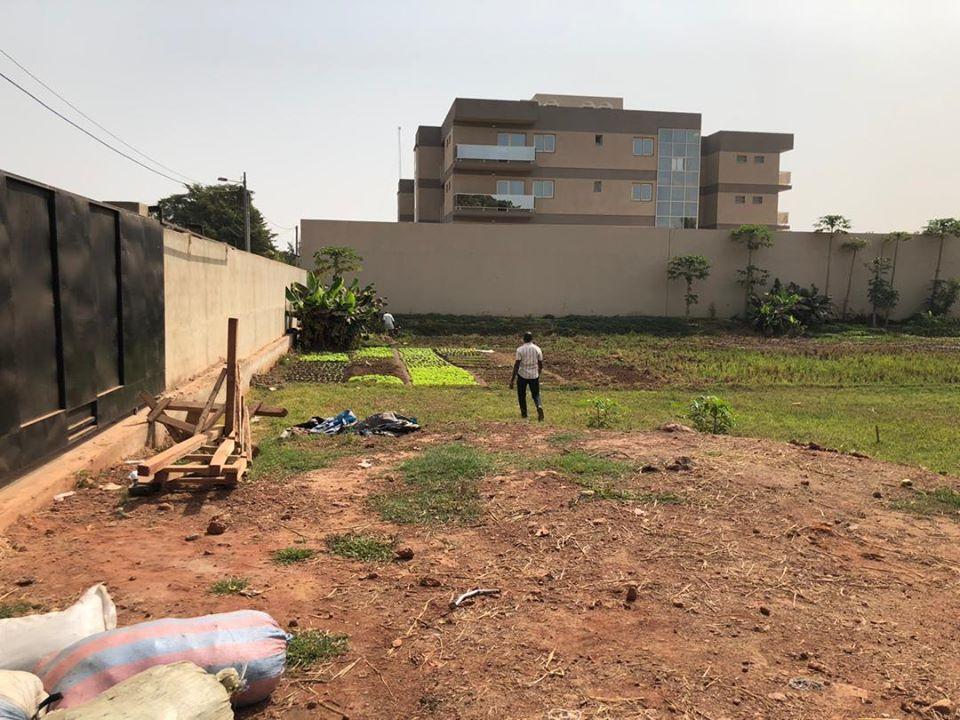 Terrain à vendre Bamako Badalaboougou