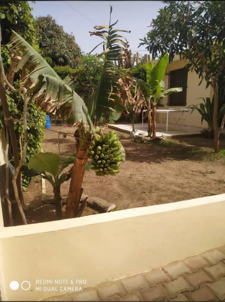 Villa à Louer à Dakar aux Point E